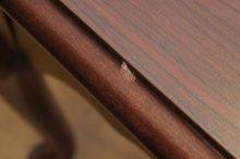 他の写真3: ☆Thomasville 猫脚 サイドテーブル☆