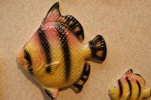 他の写真1: ウォールディスプレイ 3pcセット(Fish)#009